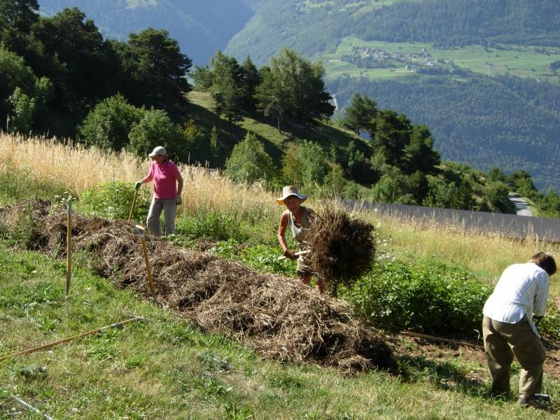 Jardin conservatoire erschmatt wallis for Entretien jardin 29